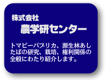 blocks_image_1_1